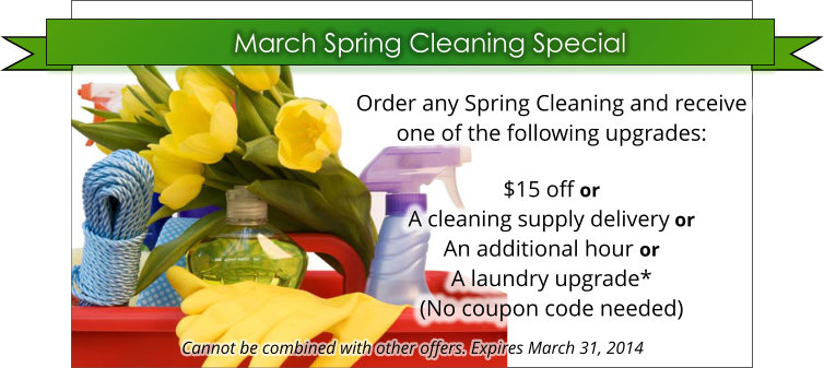 March Spring Cleaning Special
